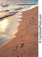 tropical strand, hos, fodspor