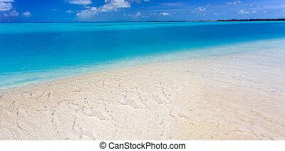 tropical strand, in, cayo, largo, ö