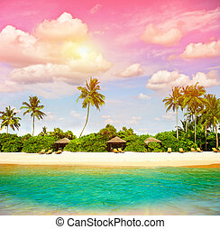 tropical strand, med, solnedgång, sky., paradis ö