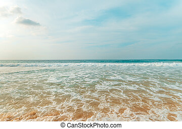 tropical strand, med, turkos, vatten