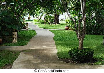 tropical strand, resort., väg