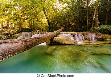 Tropical stream waterfall in deep forest jungle