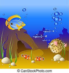 tropical, submarino, mundo, fish.