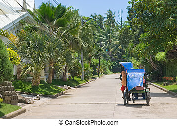 Tropical suburb with tricycle - Street view of an affluent...