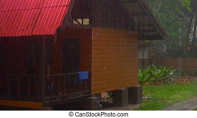 Tropical summer downpour