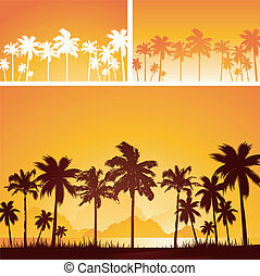 Tropical sunset background - Tropical palm tree sunset...