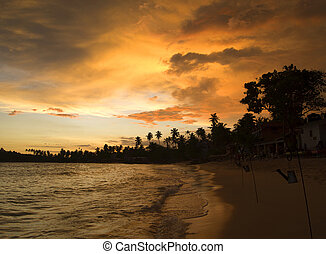 Tropical sunset landscape at the beach