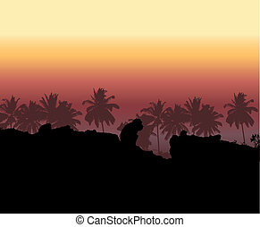 Tropical sunset, palm tree silhouet