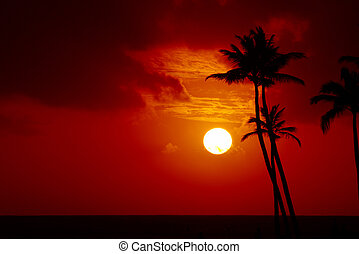 Tropical sunset over the ocean with palm trees in the foreground (horizontal orientation, color filter).
