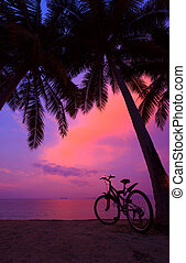 Tropical sunset with palm trees and bicycle on the beach, vertical panorama