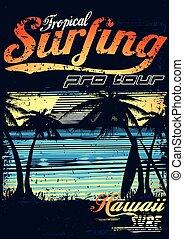 Tropical surfing at Hawaiian surf beach