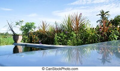 Tropical swimming pool at luxury hotel. water vibration on...