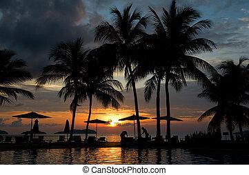 tropical, tarde, hotel