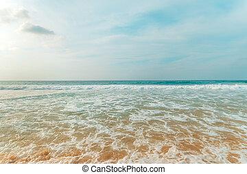 tropical tengerpart, noha, türkiz, víz