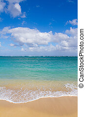 tropical tengerpart, paradicsom