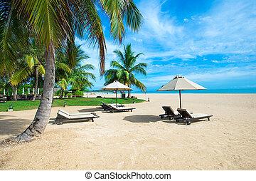 tropical tengerpart
