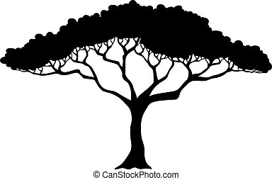 tropical træ, silhuet