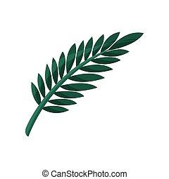 Tropical tree leaf vector Illustration