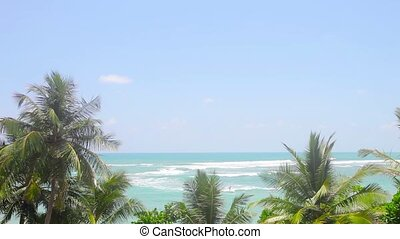 Tropical trees and the azure sea - Video 1920x1080 -...