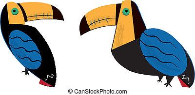 Tropical Tucan Birds