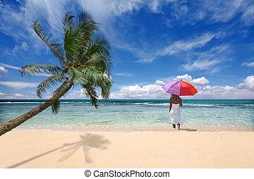 tropical, ubicación, con, palmera, y, valor en cartera de mujer, paraguas