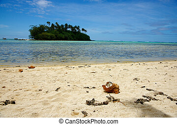 Tropical vacation destination, Cook Islands, Sout Pacific.