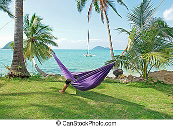 tropical vacations - hollidays in hammock, tropical green...