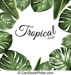 Tropical vector design border frame element. Green monstera philodendron jungle palm tree leaves assortment.