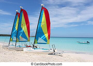 tropical, veleros, playa
