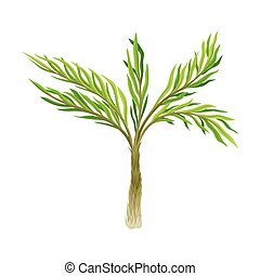 tropical, verde, tronco, árbol, vector, ilustración, follaje...
