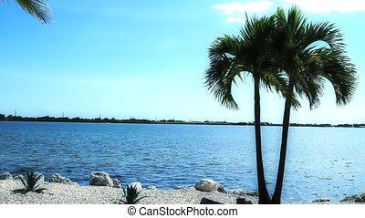 Tropical View Florida Keys