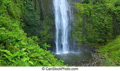 Tropical Waterfall In Hawaii