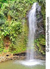Tropical waterfall in portrait