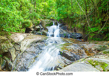 Tropical waterfall in the forest, Ton Chong Fa in khao lak Phangnga South of Thailand