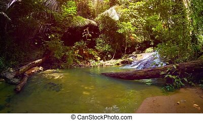 """""""Tropical Waterfall Pours into natural Pool in Rainforest Wilderness, with Sound"""""""