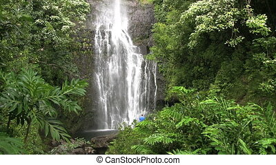Tropical Waterfall - a beautiful waterfall on the island of...