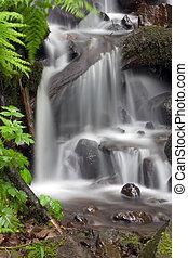 Wonderful tropical waterfall.