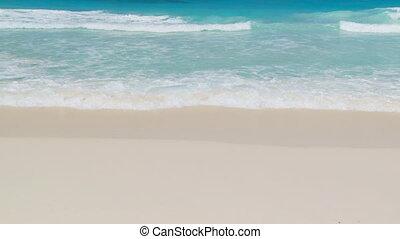 tropical waves close