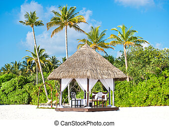 tropical wedding location. beautiful blue sky and palm trees