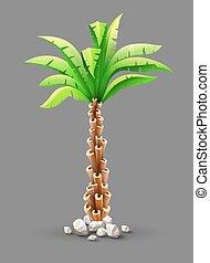 tropicale, albero palme cocco, con, congedi verdi
