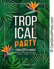 tropicale, bandiera parte