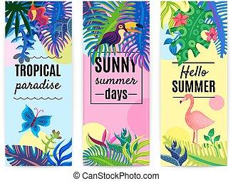 tropicale, bandiere, verticale, collezione, paradiso
