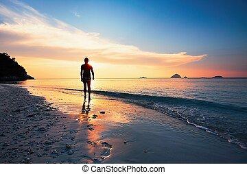 tropicale, contemplazione, spiaggia