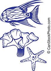 tropicale, corallo, fish, starfish.