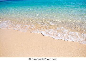 tropicale, corallo, spiaggia bianca, sabbia