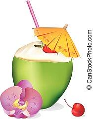 tropicale, .eps, noce di cocco, bevanda