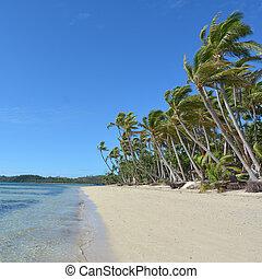 tropicale, figi, spiaggia, remoto, paesaggio