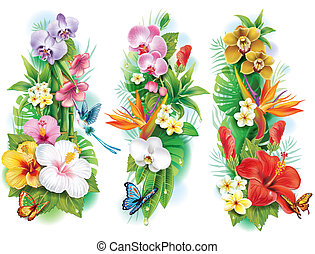 tropicale, foglie, fiori, disposizione