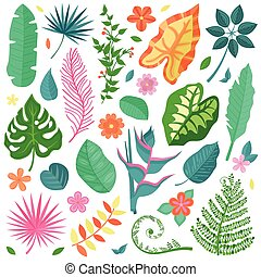 tropicale, foglie, set, fiori, collezione