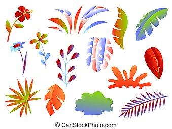tropicale, foglie, set, flowers.